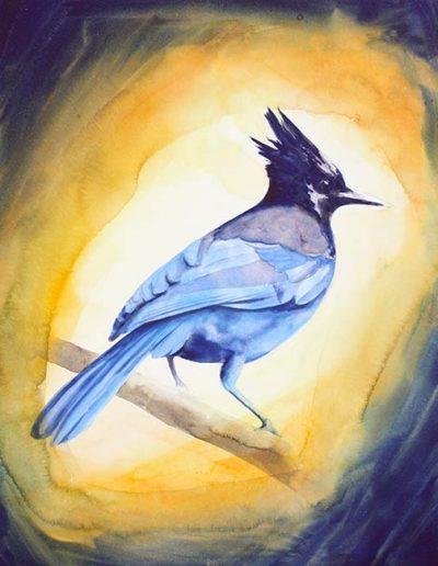 WingBird3