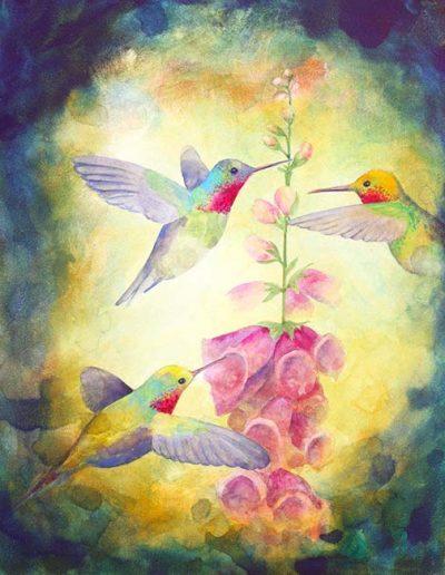 WingBird5